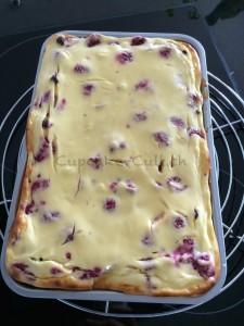 fertiger Kuchen (1)